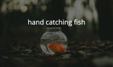 お魚つかみ取り