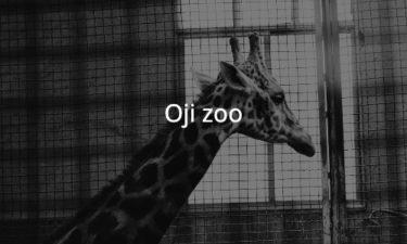 王子動物園に行ってきた